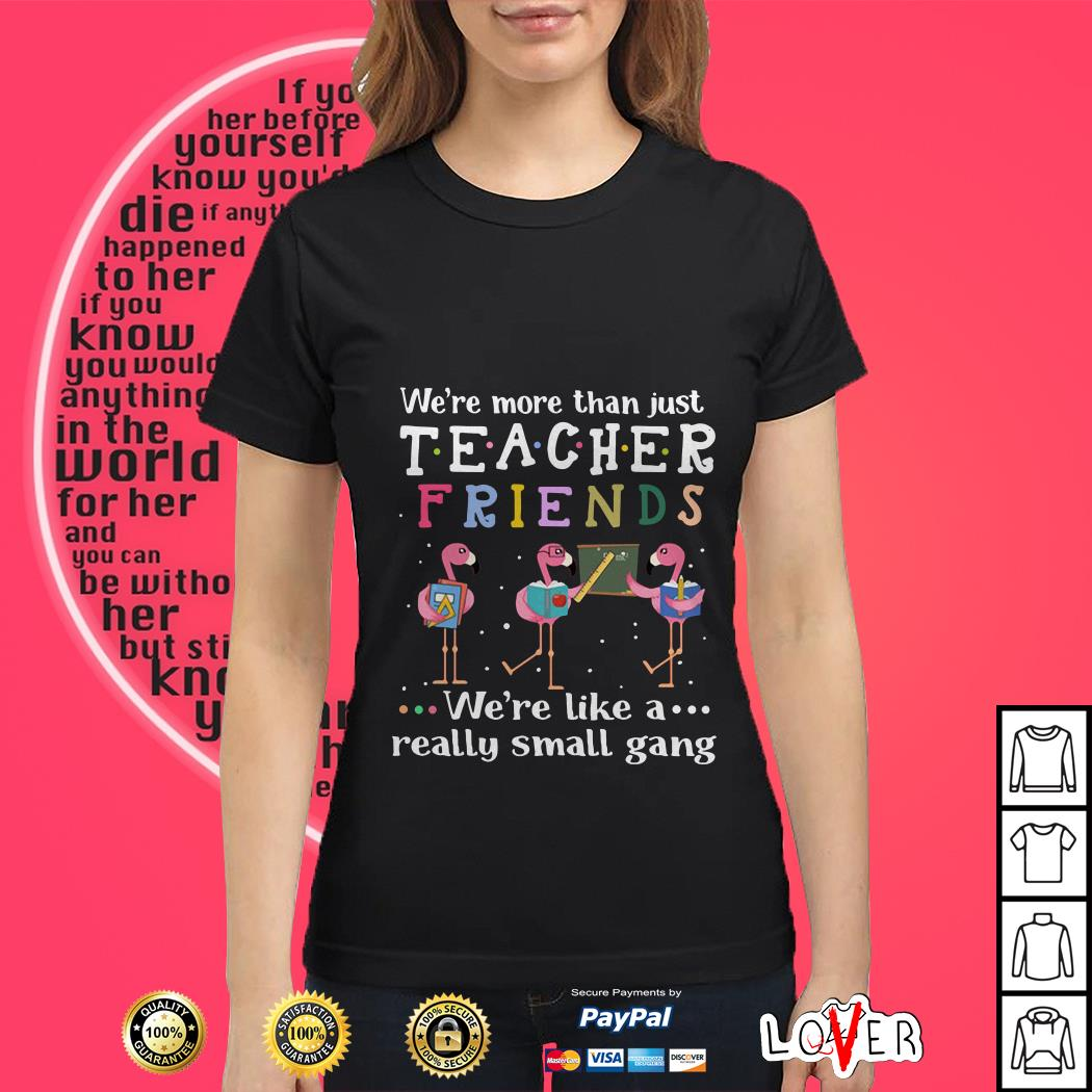b21e9566b68376 Hoodie We're more than just teacher friends Flamingos Ladies tee